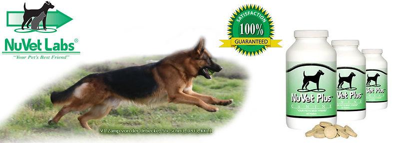 NuVet Vitamin Supplement Immunity Builder Support Pet Dogs