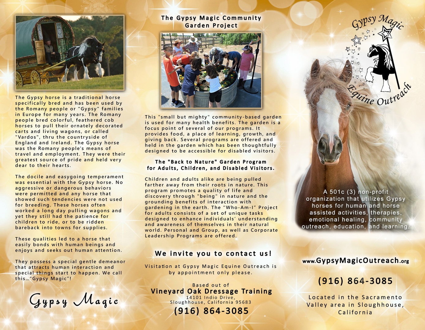 Charity Promotional Brochure
