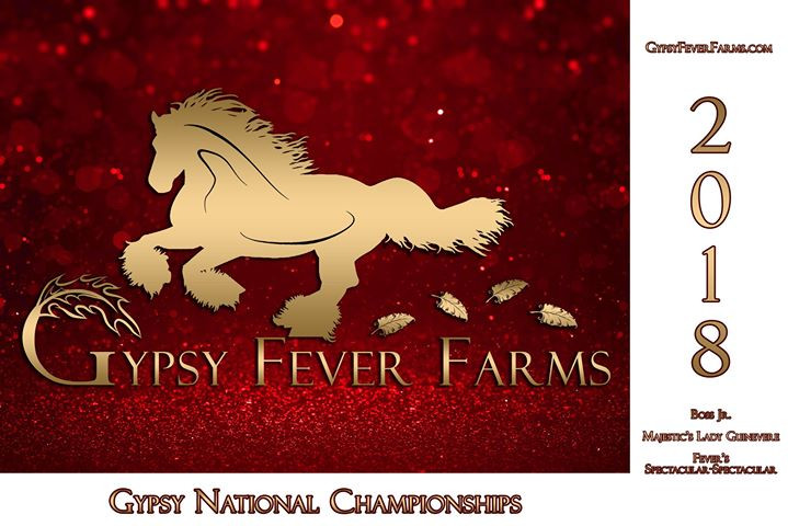 Horse Show Promotional Cards