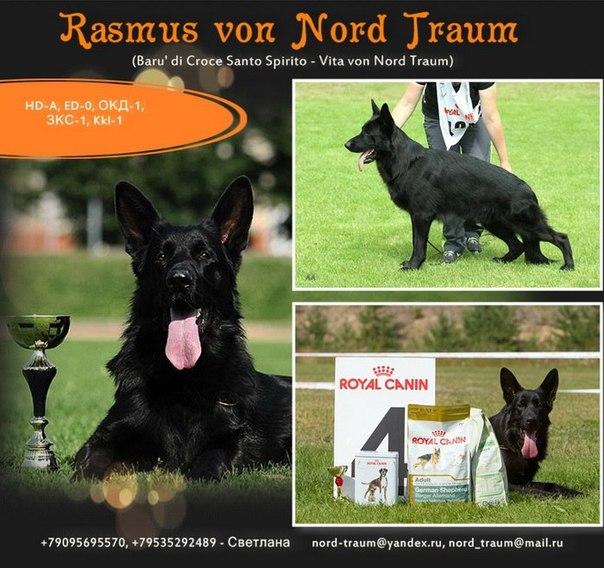 Father: Rasmus von Nord Traum