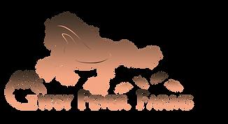 GFF_Logo_FinalTransSMPEACHWEB.png