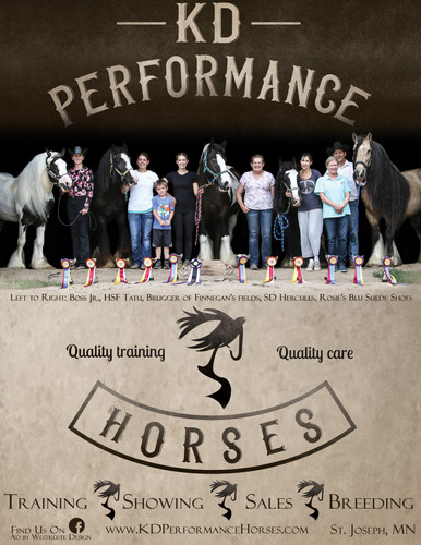 Training Barn Promotional Ad