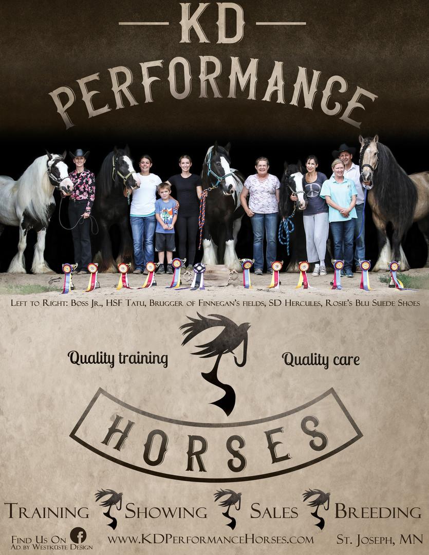 Training Barn Promotional Ad