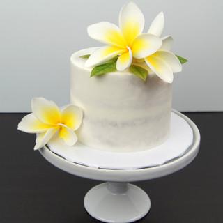 Semi-Naked Smash Cake.jpg