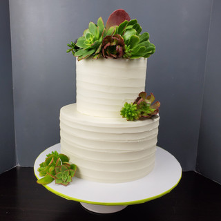 Elegant Succulent Tiered Cake