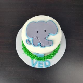 Baby Elephant Smash Cake.jpg