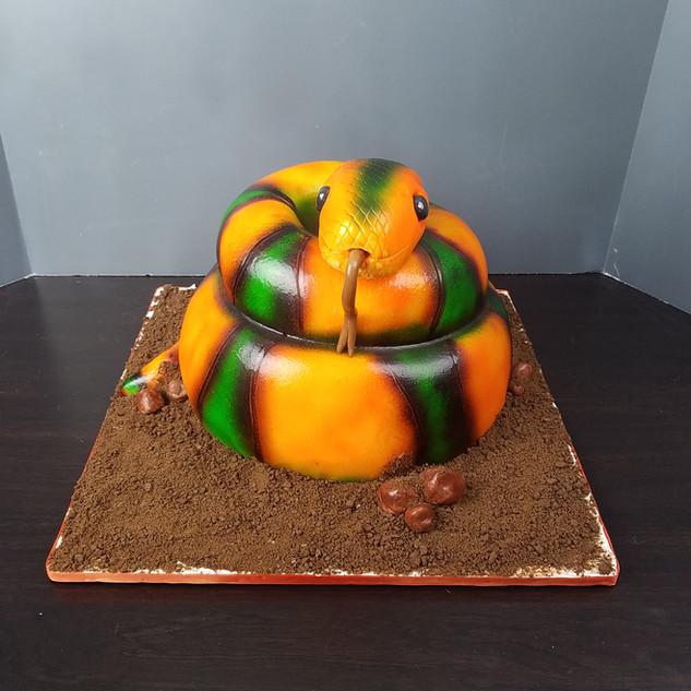 3D Snake Cake.jpg