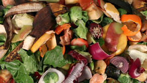 Is Food Waste Really A Problem?