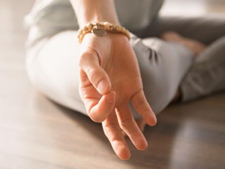 Meditation And Veganism