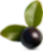 Olives pour salades de Pause Pizza Courpière