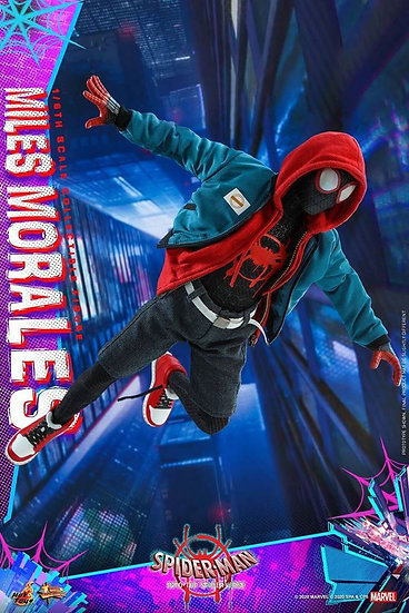 Hot Toys 1/6 : SPIDER-MAN: INTO THE SPIDER-VERSE MILES MORALES
