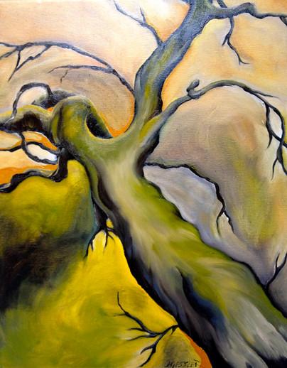 Fading Oak