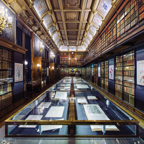 One of the Duc D'Aumale's libraries