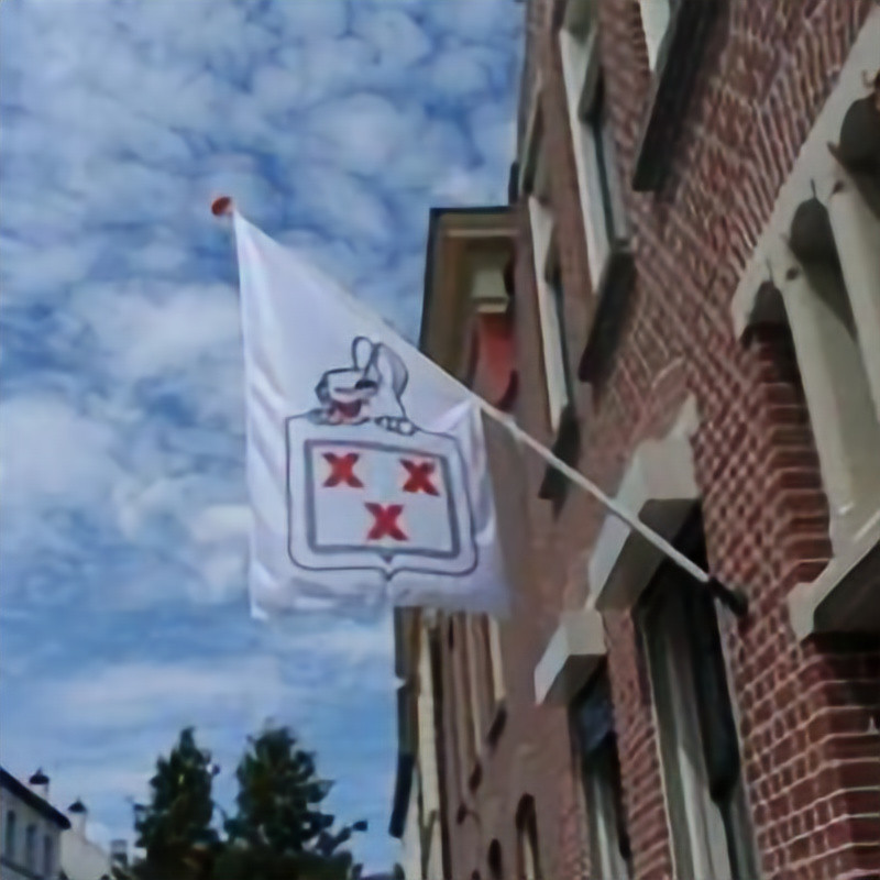 """St. Carnaval Zevenbergen - de Bult """"Huis aan Huis"""""""
