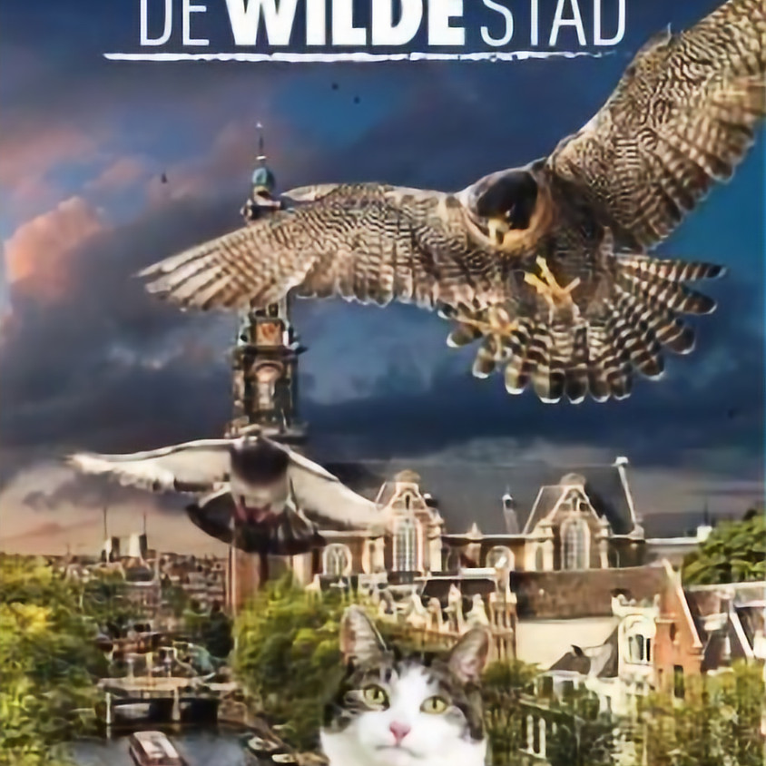 "Cine7 ""De Wilde Stad"""
