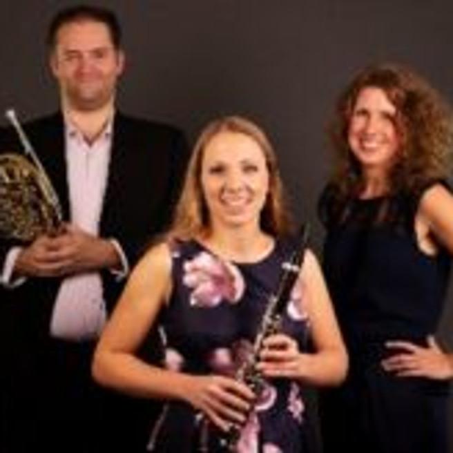 """Klassiek """" Veldtbergen Trio""""      """"GEANNULEERD"""""""