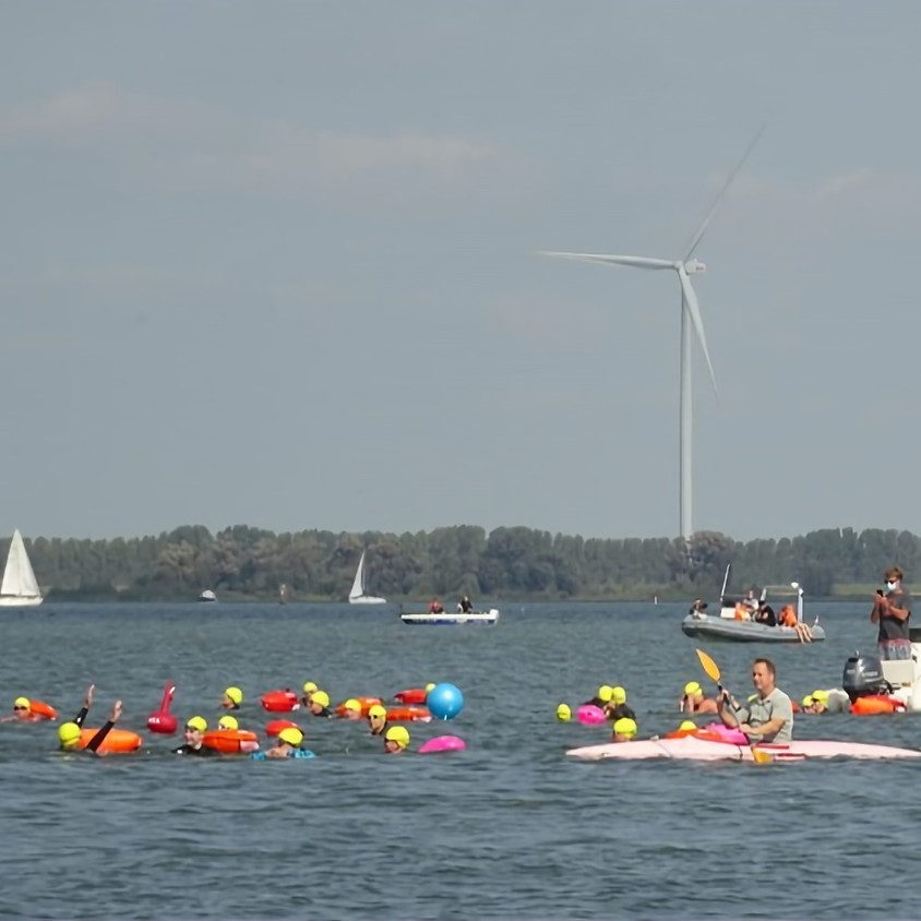 Hollandsdiep Zwemtocht