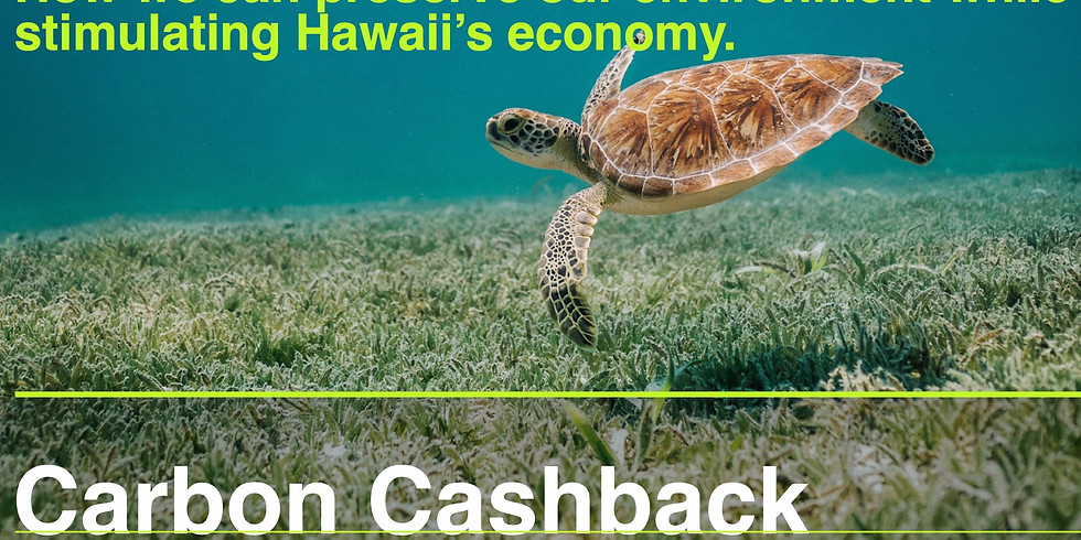Weekly Carbon Cashback Meeting (5)