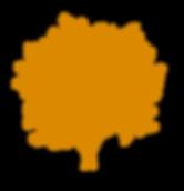 Hardwood Floors, Cypress Hardwood Floors, Vancouver Hardwood Floors, Burnaby Hardwood Floors