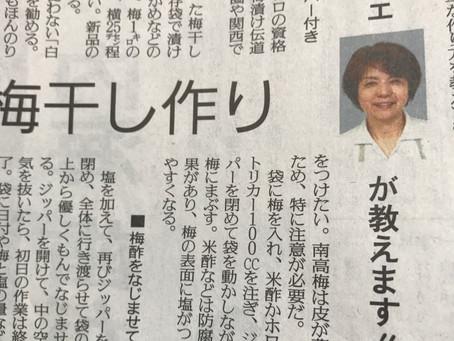 読売新聞掲載:簡単な梅を漬ける方法