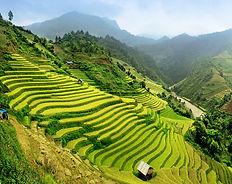 Weltreise Reiseveranstalter, Asien Bali, Asienrundreie individuell, Weltreise paschal, Weltreise Luxus, organisierte Weltreise, Weltreise indivduell, Weltreise maßgeschneidert