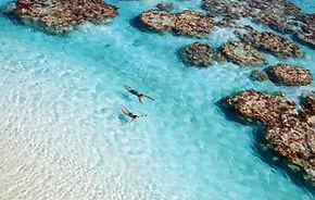 Reisebüro The Brando, The Brado buchen, Bora-Bora buchen, Tahiti buchen, Gauguin Cruises buchen, Gauguin Kreuzfart buchen, Fidschi Rundreise, Fidschi Rundreise buchen