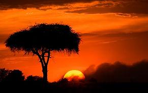Buschmänner Namibia, Sanddünen Namibia, Flugsafari Namibia, Weltreise Reiseveranstalter, Reisedesign
