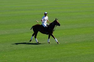 Polo in Buenos Aires im im Campo Argentino de Polo