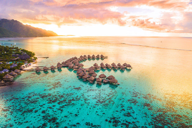 South Pacific Dreams - insights into paradise