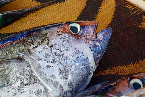 Fischmarkt Muscat, Fischmarkt Maskat, Fischverkäufer Oman