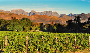 Drakensberge Südafrika, Franschhoek Südafrika, Weltreise pauschal, Luxus Weltreise, Weltreise Blog, Weltreiseblog