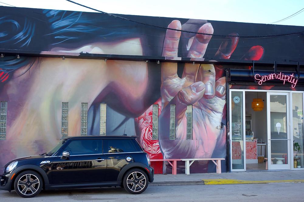 Street Art Miami, Graffiti Miami, Street Art Tour Miami, Highlights Miami
