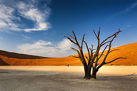 Weltreise Namibia, Namibia Rundreise, Windhoek Namibia, Namib Rand Nature Reserve Namibia, Swakopmund Namibia, Etosha Nationalpark Namibia