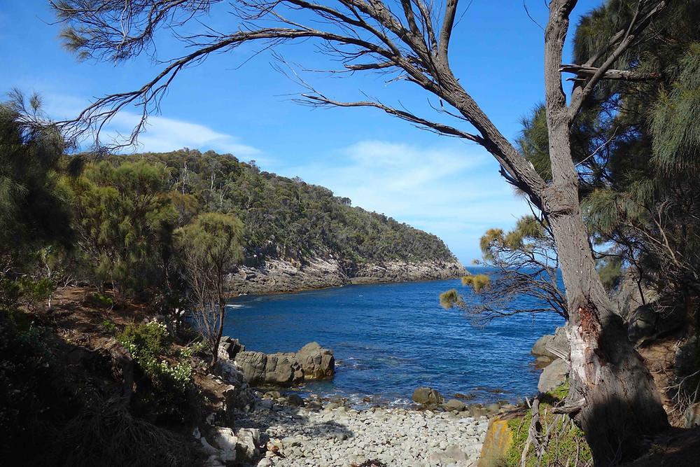 Tasmanien Weltreise-Traum, Weltreise Tasmanien, Australien Tasmanien, Weltreise Reisebüro, Weltreise Reiseveranstalter, Weltreise Veranstalter