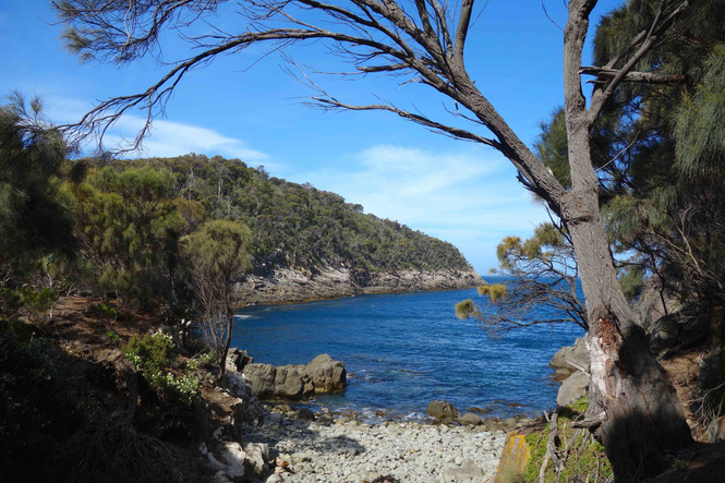 TASMANIA - fascinating landscape and charming originality, and much more!