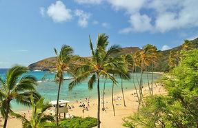 Weltreise Hawaii, Hawaii Weltreise, Weltreise Oahu, Weltreise Maui, Weltreise Big Island Hawaii, Hawaii Kauai, 3 Monate Weltreise, Weltreiseveranstalter