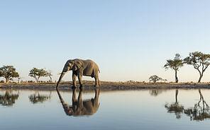 Weltreise individuell buchen, Afrika Reise planen lassen, Afrika Reiseveranstalter, Spezialveranstalter Afrika,Nachhaltig reisen