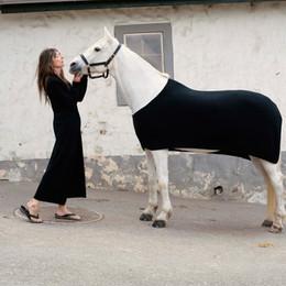 Frenckenberger Horses_12_06 T.jpg