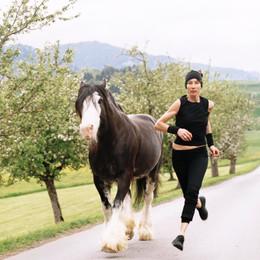 Frenckenberger Horses_04_10 T.jpg