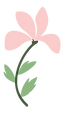 Flowers_Separated-32.png