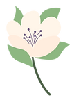 Flowers_Separated-21.png