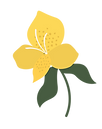 Flowers_Separated-25.png