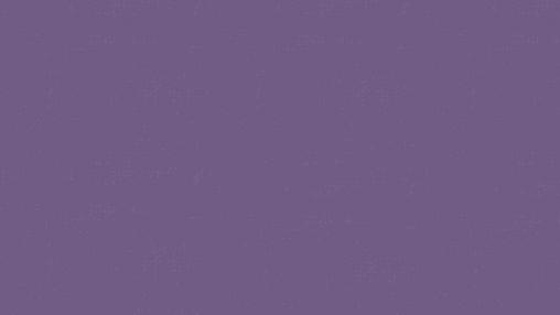 wix strip (1).png