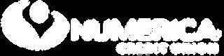 Keynote-Speaker-Numerica-logo-2013.svg_