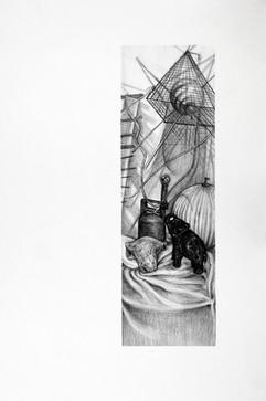 Basic Drawing Vignette