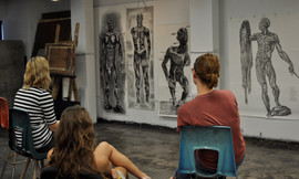 Figure Drawing Life Size Muscular System