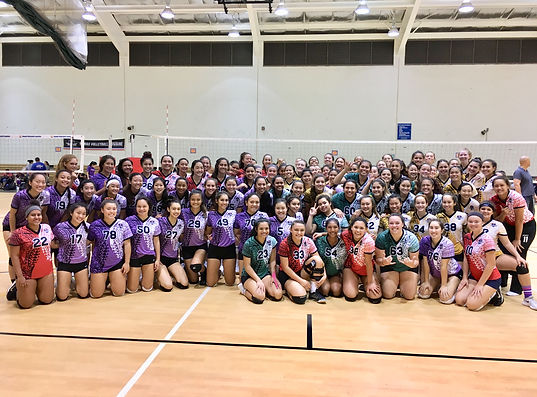 The Hawaii Volleyball Foundation