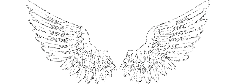 png-clipart-hand-painted-angel-wings-win