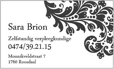 Sara Brion site.PNG
