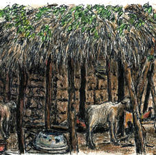 goats next to hut w thatched roof
